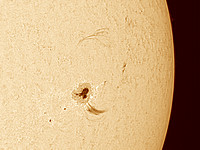 Large Sun Spot with Looping Prom 2