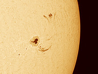 Large Sun Spot with Looping Prom